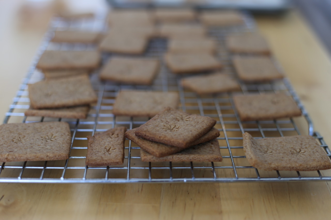 Homemade speculoos cookies